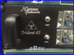 Trident 65 Dual Channel Strips Pro Racked Perfect Condition 2 Channels
